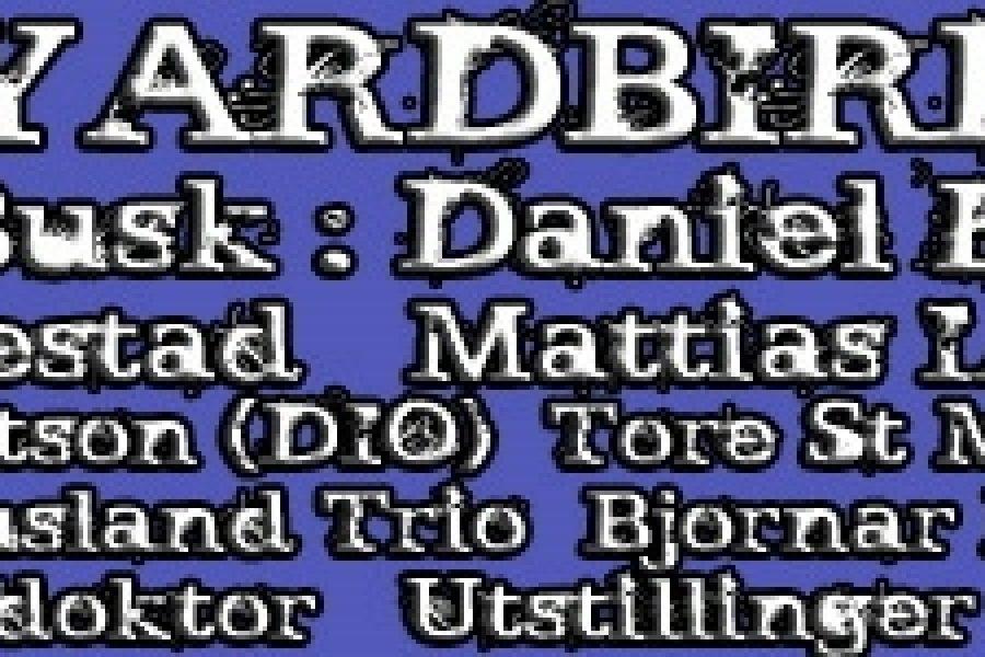 Larvik Gitarfestival 2011